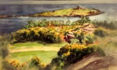 Dalkey Island from Coliemore Road
